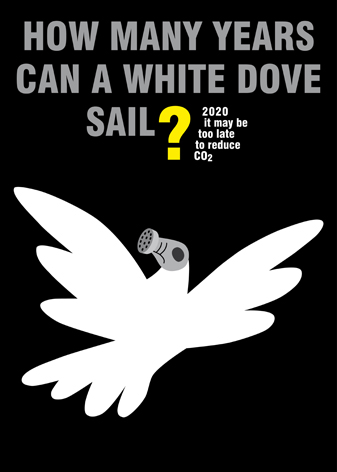 how many years can a white dove sail